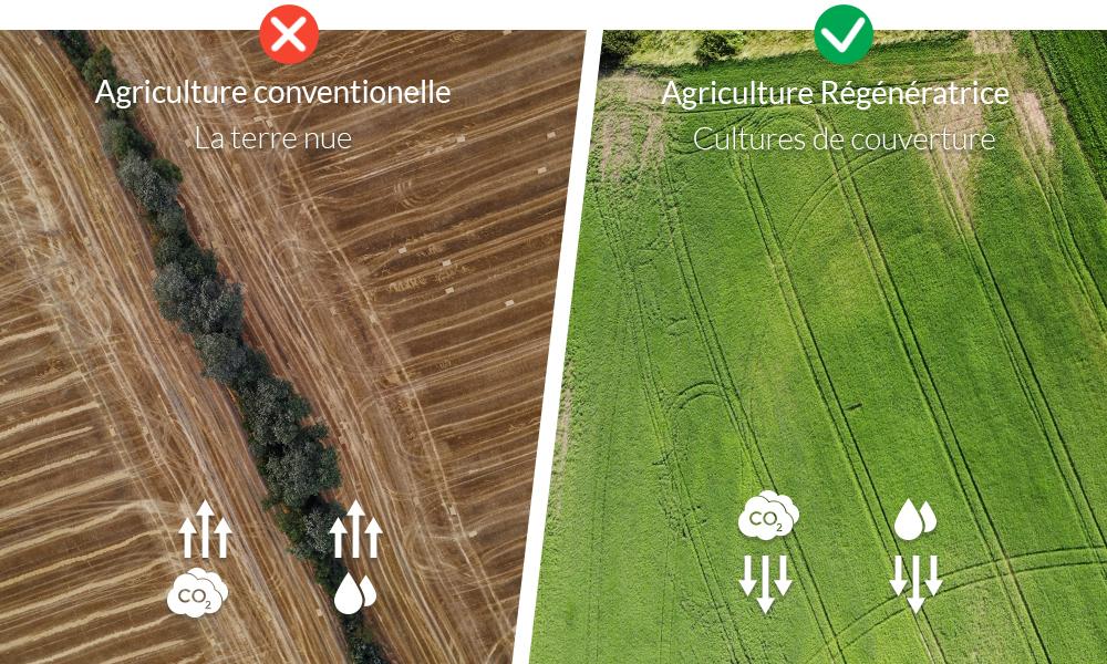 RegenerativeAgriculture_Infographic_FR